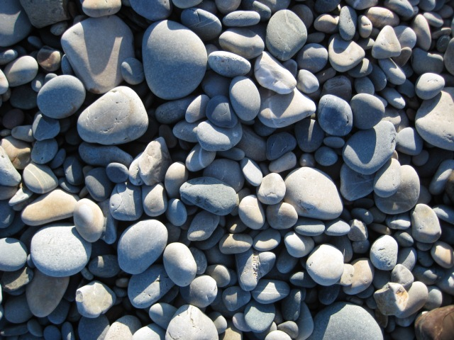 Stones from a Dinas Beach  on the high tide line