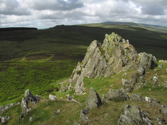 South West View from Foel Drygarn