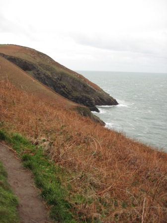 5. Walking northwards on the eastern side of the Dinas Island
