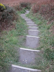 13. The path is well maintained.