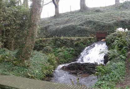 Mill stream at Melin Tregwynt