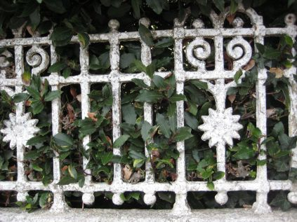 Iron railings 10