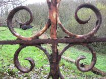 Iron railings 8