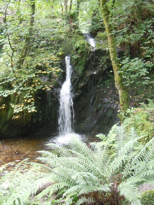 Aberfforest Falls